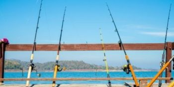 Fishing Rods - Hero Image